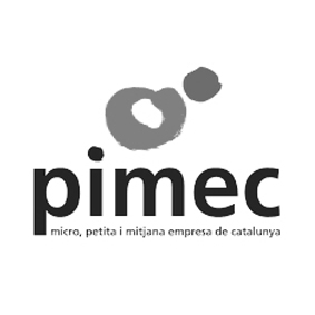 Coaching-empresas-maria-jose-torrente-pimec